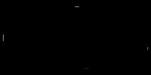 Logo Geograffeur